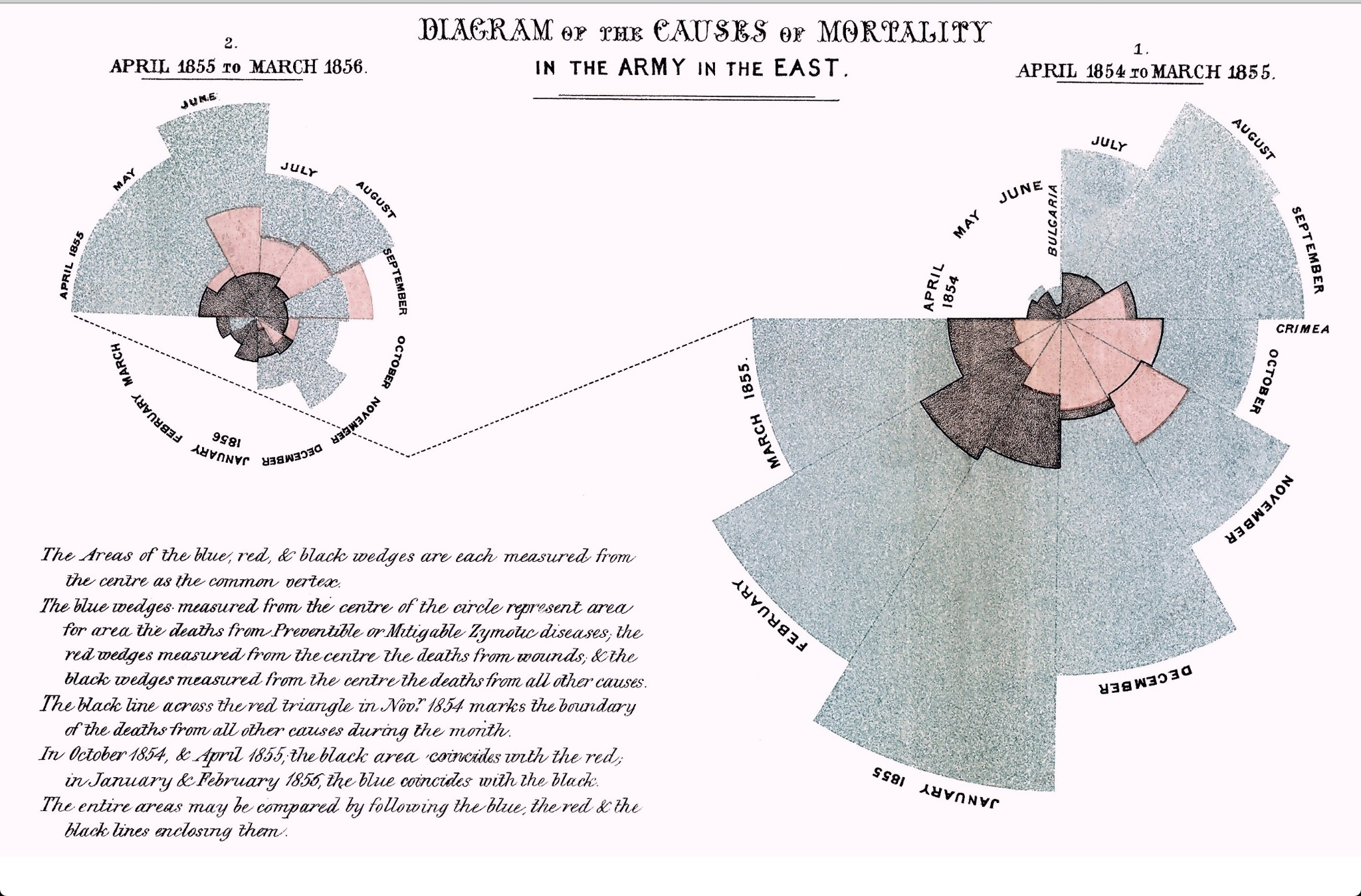 Image result for florence nightingale infographics