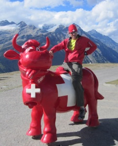 A mounted voter on a red plastic cow, on wheels. Oh to be Swiss